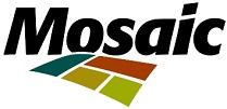 Trainee Mosaic 2014